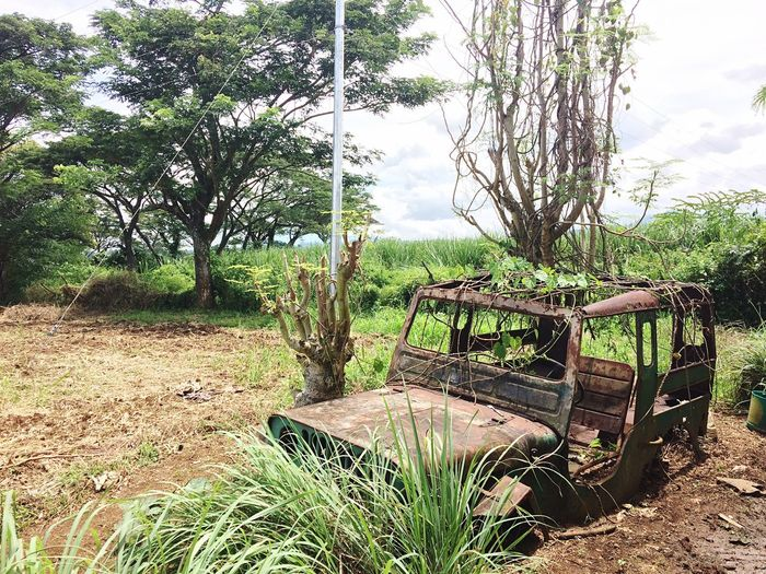 Philippines Tree Landscape Field Sky Beauty In Nature Oldcars Ruins