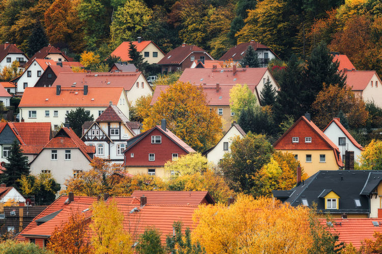 Houses and trees in town during autumn