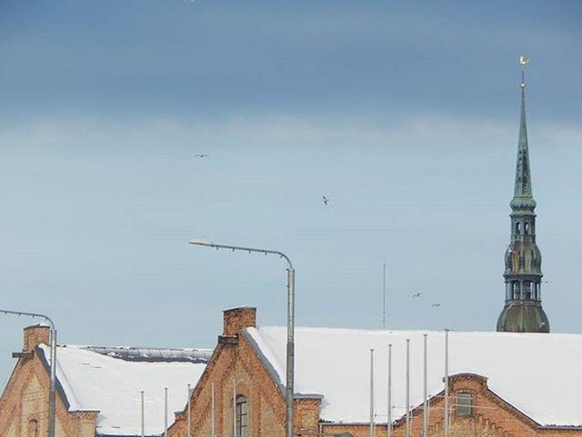 Riga Riga Latvija Latvia Rigaofficial Rigaphotos Rigailoveyou Rigaplaces Visit_latvia Pēterbaznīca Pēterbaznīca Spīķeri BBCTravel Ziema Winter Jumts Roof Rooftop Baltictrend Bestofbaltics