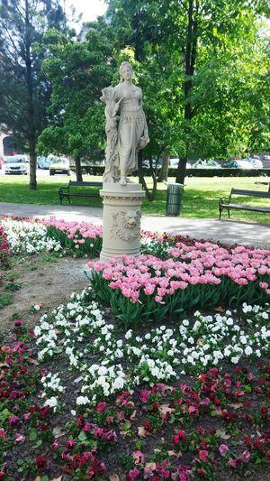 Flower Statue Sculpture Park Osijek, Croatia