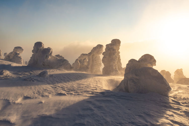 Photographs taken on the top of the Harghita mountain, Transylvania. Romania 2019 Huge snow, frozen pine trees. Snow Snowcapped Mountain Mountain Top Mountain Range Transylvania Romania Sunrise Sunrise_sunsets_aroundworld Frozen Frozen Trees Winter Weather Winter Foggy Clouds Pele Photography Snow Covered