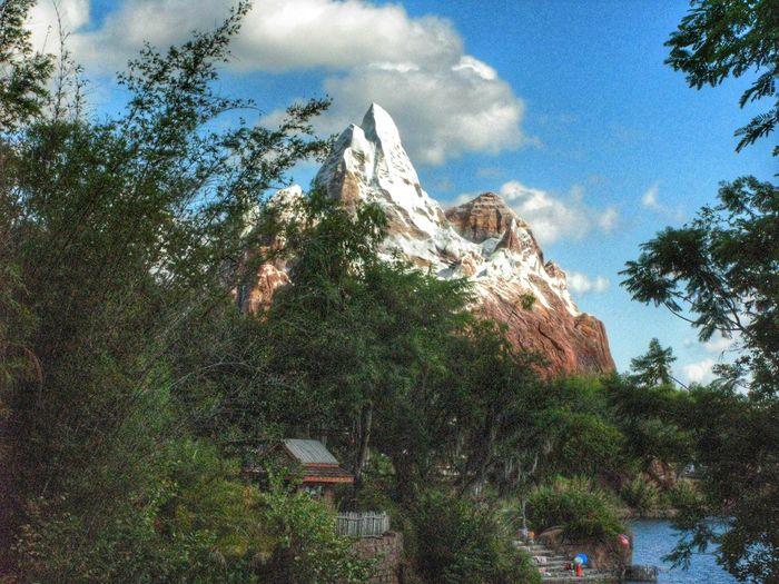 Walt Disney World Disney's Animal Kingdom Orlando Orlando Florida Florida Expedition Everest Mountain