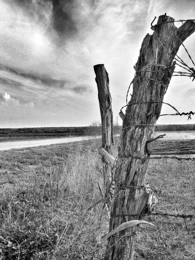 Blackandwhite Rural Scenes Eye4photography  Fencepost Friday Ee_daily