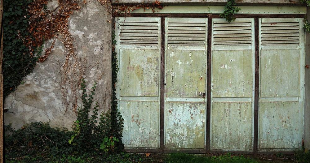 Architecturerurale Automn Automne🍁🍂🍃 Bleneau Closed Door Entrance Grainedenature Igersbourgogne Igersyonne Lierre Mur Porte Portedegarage Puisaye Wall Yonne
