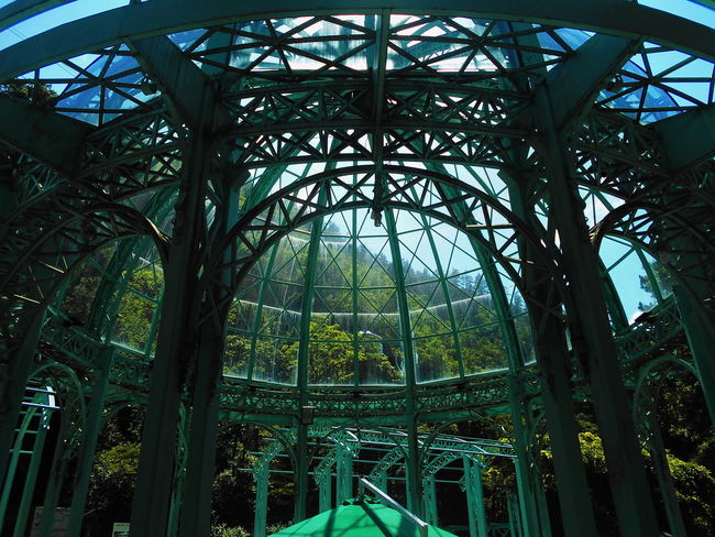 Architecture Borjomi Built Structure Day Green Color Low Angle View Nature No People Outdoors Sky Travel Destinations Tree