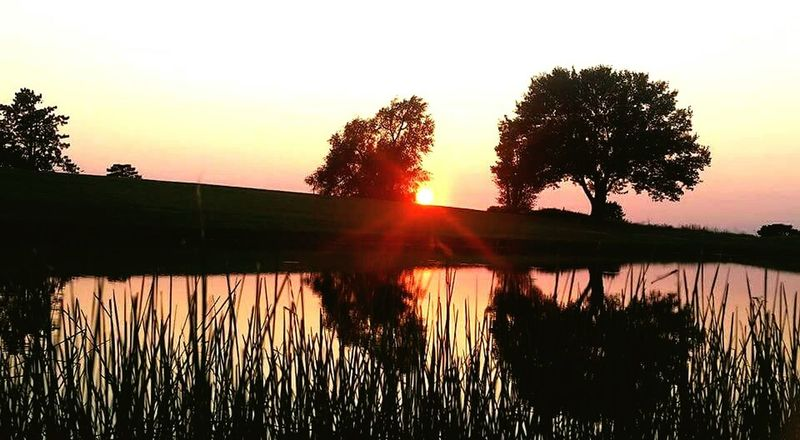 Landscape_Collection Lamdscapes With Whitewall Sunset Reflection_collection Reflections In The Water Trees TreePorn Here Belongs To Me Bestofeyem Check This Out! Showcase April From My Point Of View Things I Like Best EyeEm Shot Sunsetlover Springtime April Showcase Nature_collection Sunset Silhouettes Beauty The Great Outdoors - 2016 EyeEm Awards