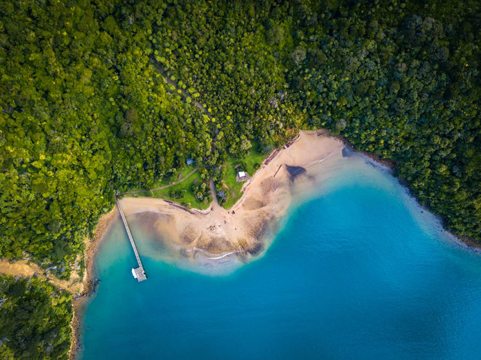 High angle view of sea amidst trees