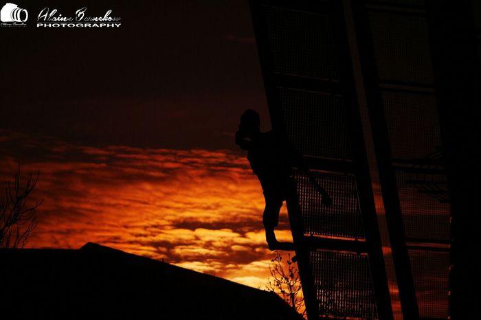 Man In Black Sunlight Sun ☀