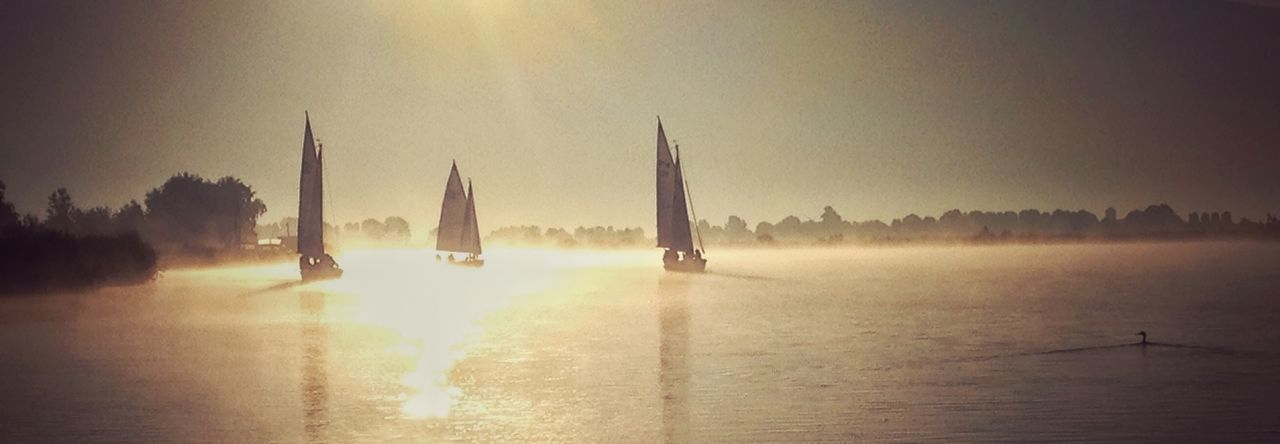 Sailing Segeln Sailing Boat Light And Shadow Light Duck Water in Sneek , Friesland Netherlands