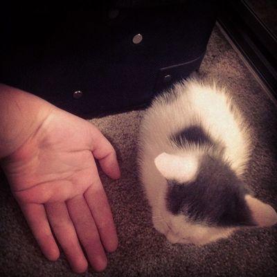 Tiny tiny tiny!!!