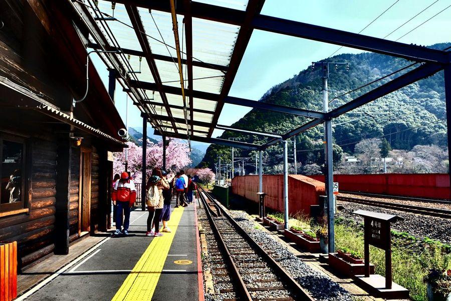Waiting Trainstation Kameoka Japan Saganotrain Romantic Perspective Takephoto Bymyself