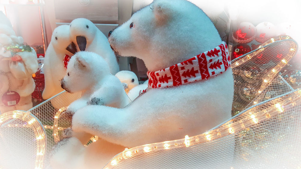 Toy Stuffed Toy Celebration Toys Human Representation No People Christmas Decoration Christmas Lights Christmas Spirit Teddy Bear Teddy Teddy Bear Polar Bear Christmas Christmastime No People Technology Outdoors Day Close-up Indoors