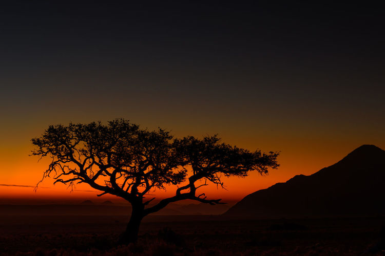 Beauty In Nature Eyemlandscape Landscape Landscape_Collection Landscape_photography Luminosity Nature No People Outdoors Plain Scenery Scenics Silhouette Sky Sunset Tree