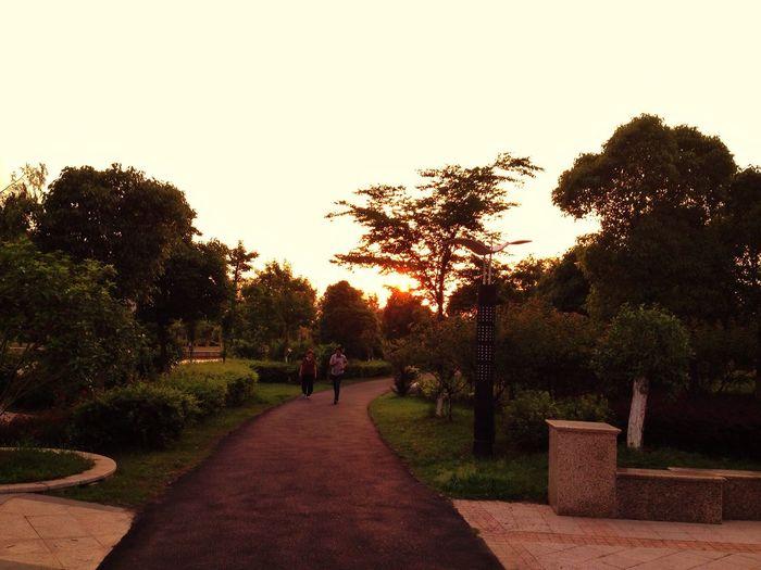 河边绿道的漫步。 Enjoying Life City Hello World Garden 嘉兴 Beautiful Scenery Jiaxing
