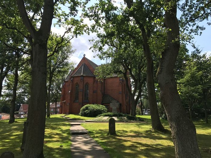 Tree Built Structure Green Color Church