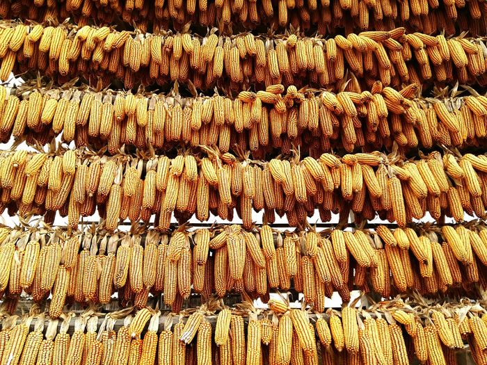 Full Frame Shot Of Corns Hanging At Market