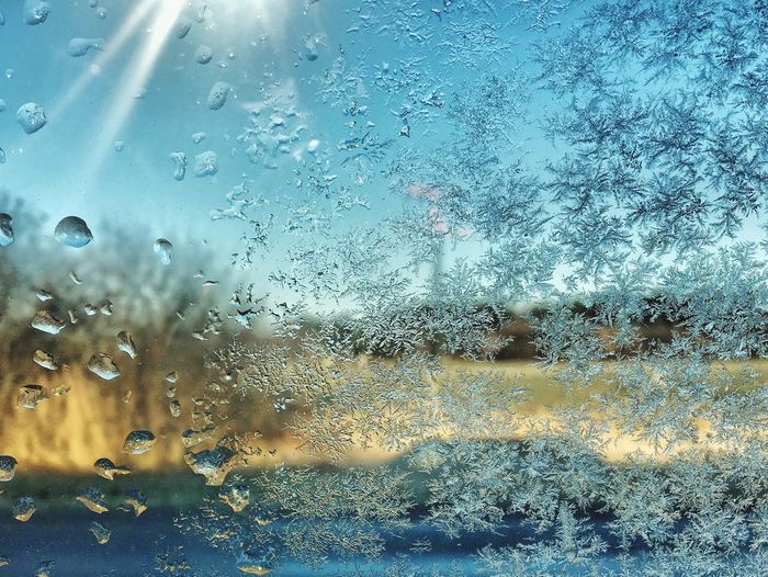S U N S H i N E vs. F R O S T Sunshine Frost Frosted Glass Glass - Material Window Water Drop Weather RainDrop Nature Frozen Cold Cold Days Icecrystals Crystal