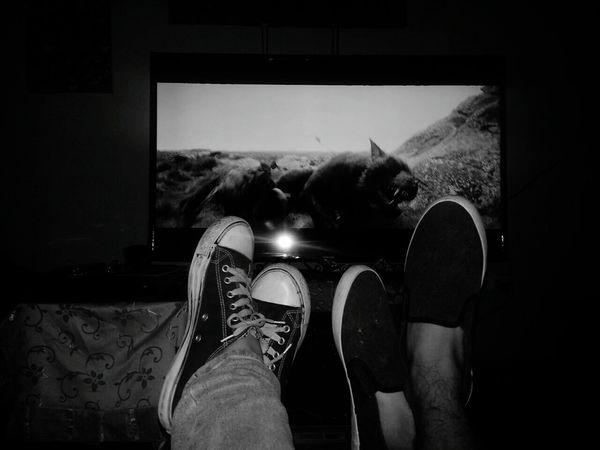 Gordo Movies