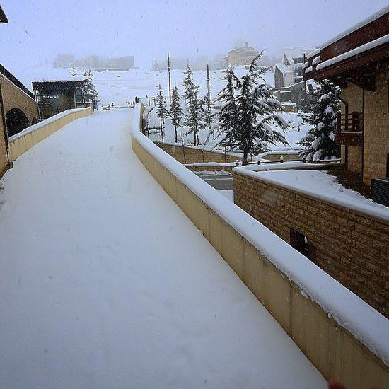 Lebanon#me#faraya#intercontinental#mzar#snow#cydars#beyrouthlife#snow#man#killing#matrix#slow#motion#destroying#others#snowman#intercontinentalmzaar