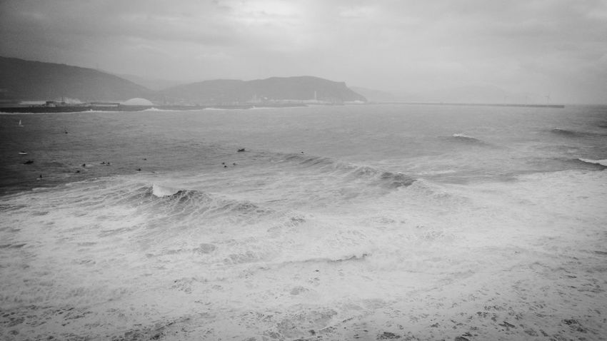 Great day for Surfing Sea Blackandwhite Bw_collection