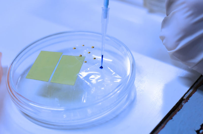 High angle view of chemical being poured from pipette in petri dish on table