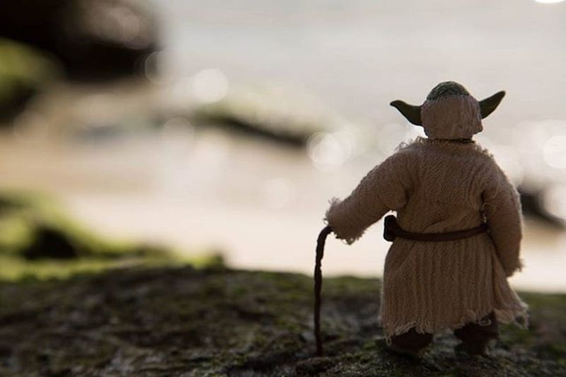 Paradise 🌅 Starwars Starwarstheblackseries Yoda Masteryoda Theblackseries Jedi Returnofthejedi Empirestrikesback