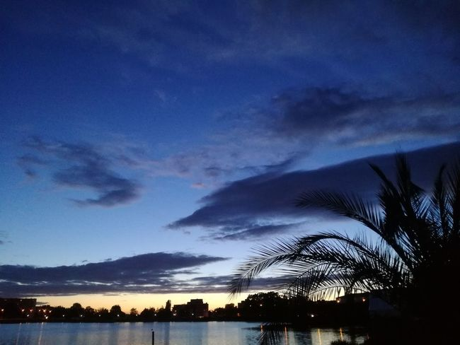 Cloud - Sky Beauty In Nature Silhouette Sky Night Water Tranquility Palm Tree Outdoors No People Blue Sunset Best EyeEm Shot Cities At Night City Lights Summer Palmtree Palm Leaf Reflection Vacations Lake View Plant Dramatic Sky