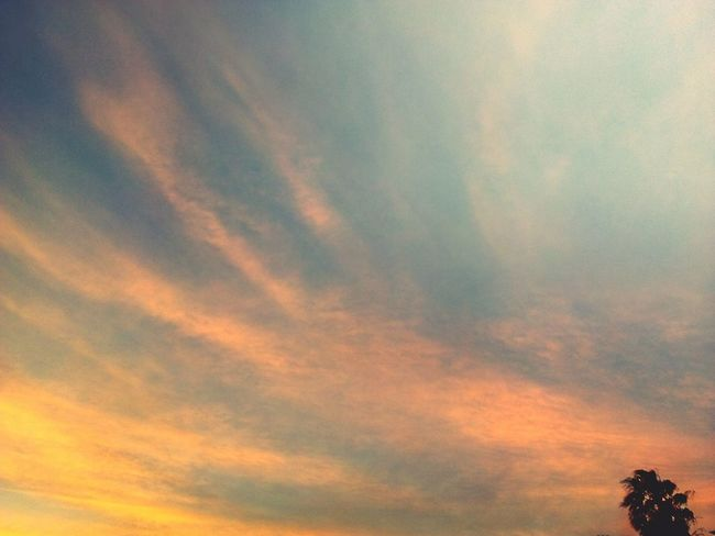 Sunset Dramatic Sky Pink And Yellow Sky Beauty In Nature Nature Sunset Scenics No People Cloud - Sky Outdoors