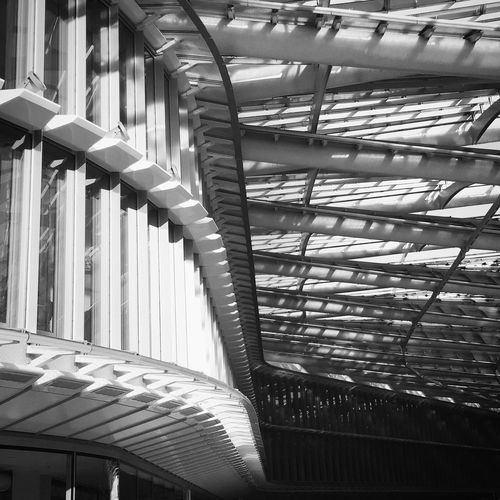 Architecture Built Structure Low Angle View Pattern Modern Building Ceiling Architectural Feature Repetition In A Row Office Building Paris Family Love Urbanphotography Urban Geometry Architecture Outdoors Urban Day Geometric Shape Curve No People Building Story Architectural Design