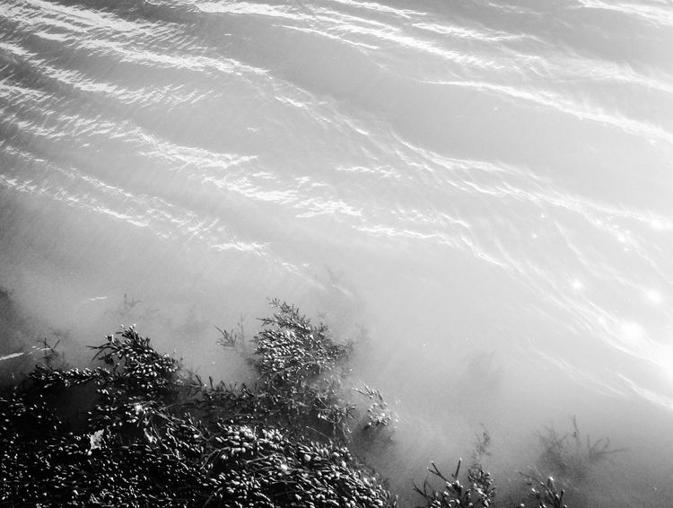 Nature Water Beauty In Nature Scenics No People Outdoors Tranquility Tranquil Scene Day Sky River Riverside Tay River Tay Dundee Dundee,Scotland Black And White Blackandwhite Bnw Monochrome Photography Monochrome