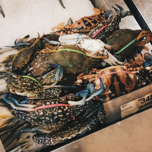EyeEm Selects Crabs
