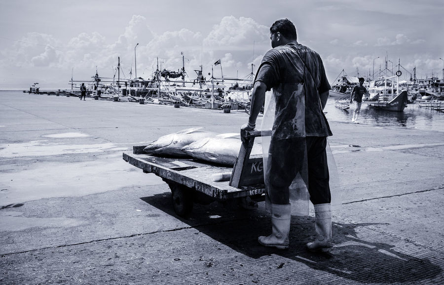 Hauling Two Tunas The Photojournalist - 2017 EyeEm Awards One Man Only Sea Adult One Person Outdoors Full Length Fisherman Occupation Sky Day Working Fish Monger Yellowfin Tuna Fish Market Tuna Seafood Raw Fresh Eyeem Philippines Market Action The Street Photographer - 2017 EyeEm Awards Freshness Philippines The Street Photographer - 2017 EyeEm Awards