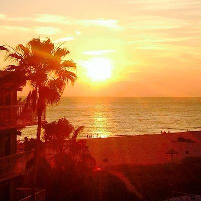 Sunset Beauty Picoftheday
