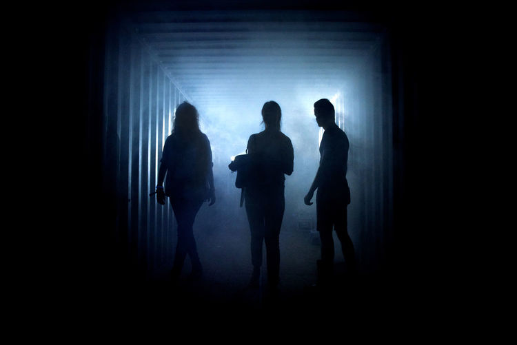 Silhouette people standing against blurred background