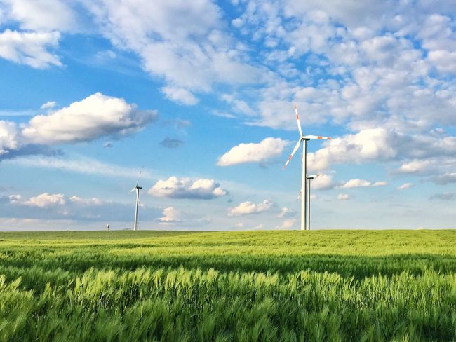 Alternative Energy Wind Power Fuel And Power Generation Wind Turbine Renewable Energy Environmental Conservation Windmill Landscape Sky Grass Rural Scene Field Electricity  Nature Growth Technology No People Cloud - Sky Green Color Industrial Windmill