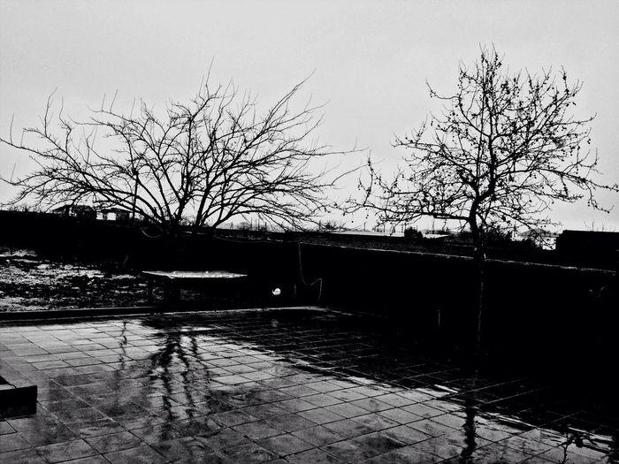 Rain Raindrops Landscape December Rain