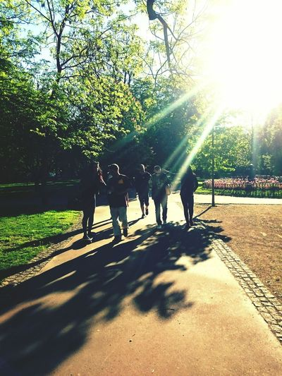Beatiful Morning Morning Walk With Friends)) Something Like...after Party)) Great Time With Friends Sunny Morning May2016 Walking Around Praha Czech Republic Enjoying Life