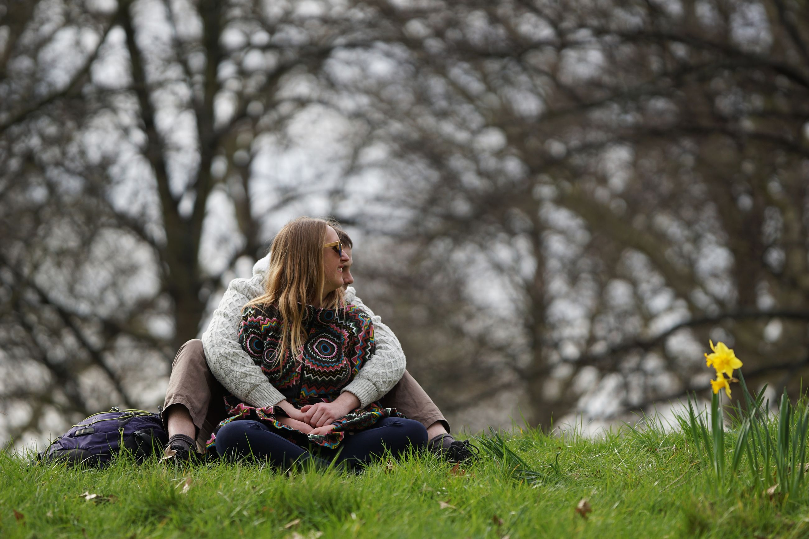 plant, leisure activity, sitting, tree, women, grass, one person, lifestyles, real people, nature, hair, adult, land, young women, young adult, casual clothing, front view, field, full length, hairstyle, outdoors