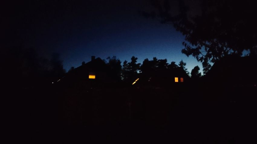 The lights. Sweden Buildings Building Lights Night Lights Residential  Darkness Nightfall Dusk Blue Lights Hope Silhouette Light And Shadow Mystery Tree Silhouette Astronomy Moon Dark Sky