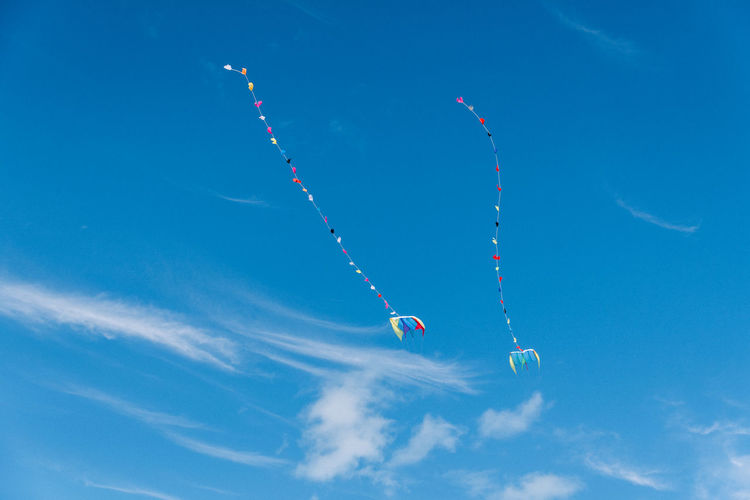 Two kites two of a kind twin kites free in the sky