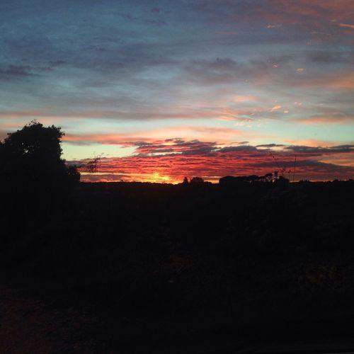 Sunset in Roma , Italy