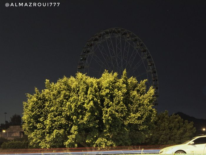 حديقة الملك فهد EyeEm Eyeem Travel Plant Tree Growth No People Night Nature Sky Green Color Building Exterior Scenics - Nature Travel Tranquility Low Angle View Tourism Beauty In Nature Travel Destinations Outdoors Illuminated Built Structure Architecture