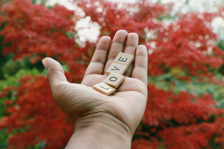 Adult Adults Only Authentic Moments Autumn Autumn Colors Close-up Day Focus On Foreground Human Body Part Human Hand One Person Outdoors People Photooftheday Picoftheday TheWeekOnEyeEM