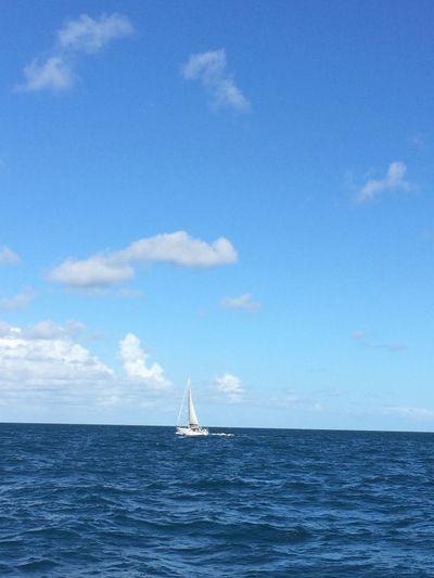Blue Wave Sea And Sky Boat Australia Holiday