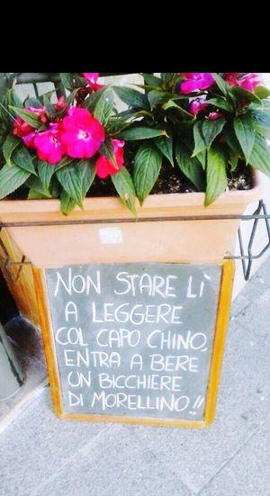 Wine Moments Morellino Di Scansano