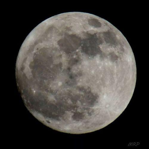 Moon Moon D7000 Nojoke