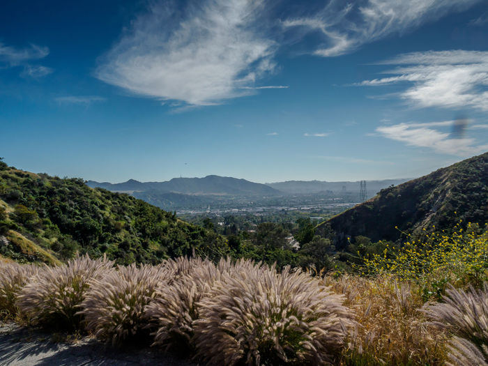 Beauty In Nature Burbank  Day Growth Landscape Mountain Mountain Range Nature No People Outdoors Scenics Sky Tranquil Scene Tranquility Tree Verdugo Mountains