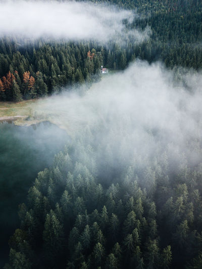 Aerial view of smoke in forest