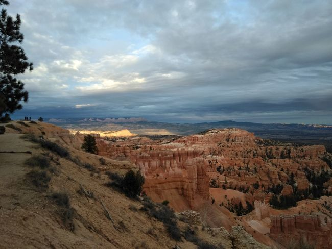 National Park Bryce Canyon Nature Scenics Beauty In Nature Outdoors Landscape Cloud - Sky No People Sky Growth Travel Destinations Tree Vacations Day