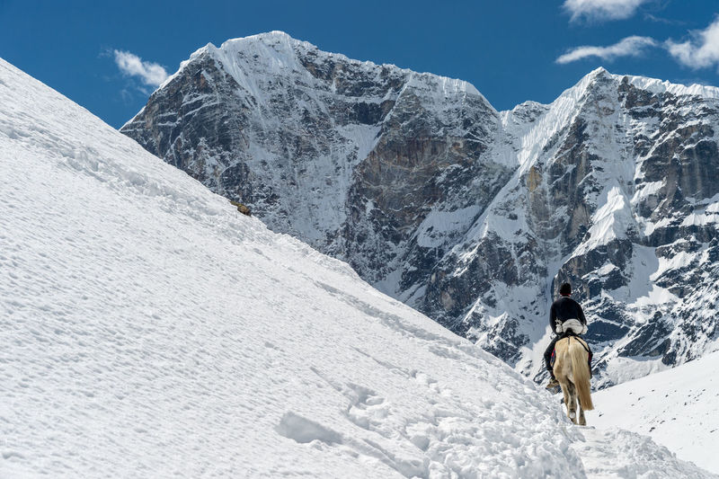 Rear view of man riding horse on snowcapped mountain against sky